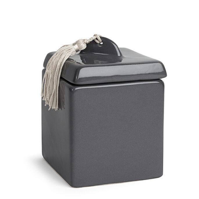 La petite boîte grise